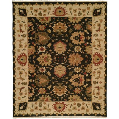 Hand-Knotted Black/Beige Area Rug Rug Size: 10 x 14