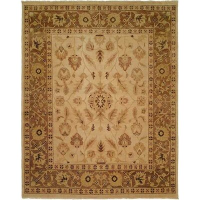 Hand-Knotted Beige Area Rug Rug Size: Rectangle 6 x 9