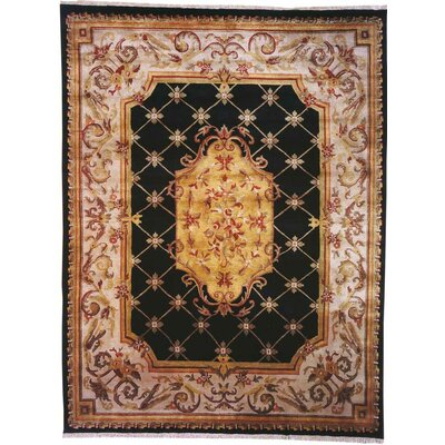 Guangzhou Hand-Woven Black/Ivory Area Rug Rug Size: Rectangle 6 x 9