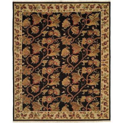 Acharya Hand-Woven Black/Brown Area Rug Rug Size: 4 x 6
