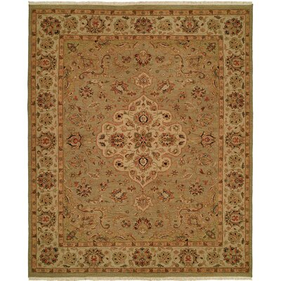 Agarwal Hand-Woven Brown Area Rug Rug Size: 6 x 9