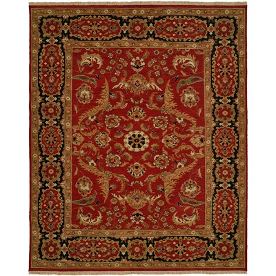 Aggarwal Hand-Woven Red Area Rug Rug Size: Rectangle 6 x 9