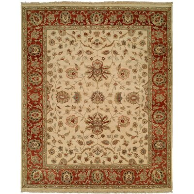 Amin Hand-Knotted Brown/Beige Area Rug Rug Size: 6 x 9