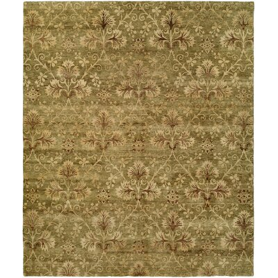 Anthony Hand-Woven Green Area Rug Rug Size: 6 x 9