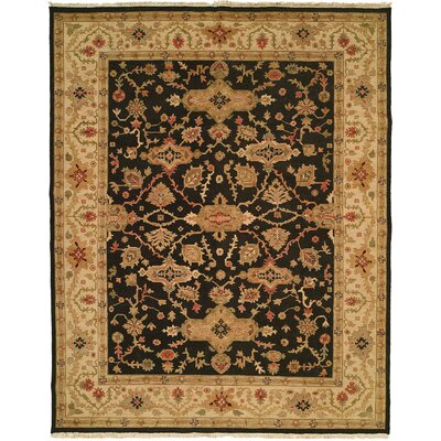 Apte Hand-Woven Black/Beige Area Rug Rug Size: 4 x 8