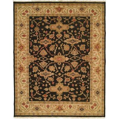 Apte Hand-Woven Black/Beige Area Rug Rug Size: 8 x 10