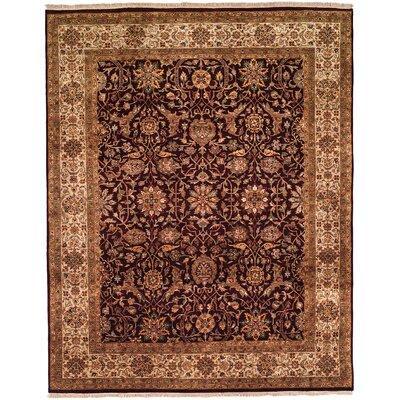 Bakshi Hand-Woven Brown/Beige Area Rug Rug Size: 6 x 9