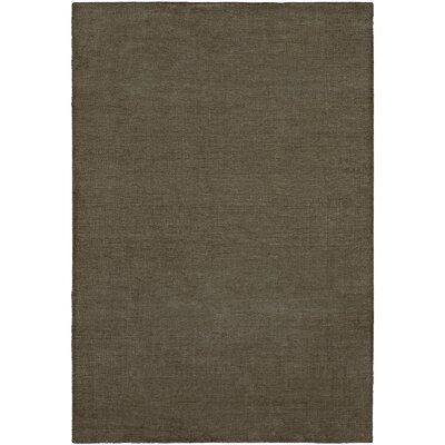 Barman Hand-Woven Gray Area Rug Rug Size: 9 x 12