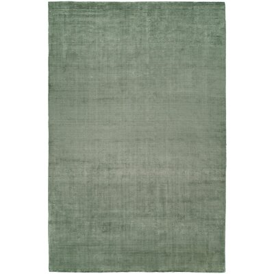 Ben Hand-Woven Green Area Rug Rug Size: 5 x 8
