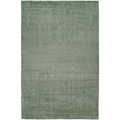 Ben Hand-Woven Green Area Rug Rug Size: 9 x 12