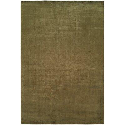 Bhandari Hand-Woven Green Area Rug Rug Size: 36 x 56