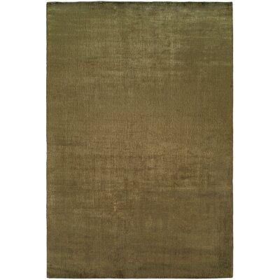 Bhandari Hand-Woven Green Area Rug Rug Size: 5 x 8