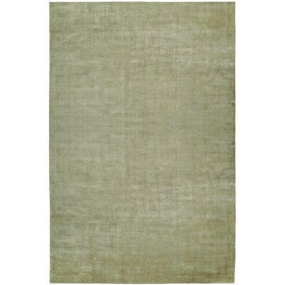 Bhatia Hand-Woven Green Area Rug Rug Size: 36 x 56