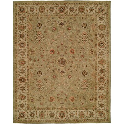 Chakraborty Hand-Woven Green Area Rug Rug Size: Rectangle 9 x 12
