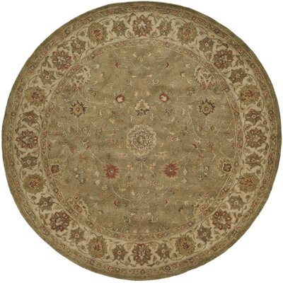 Chakraborty Hand-Woven Green Area Rug Rug Size: Round 6