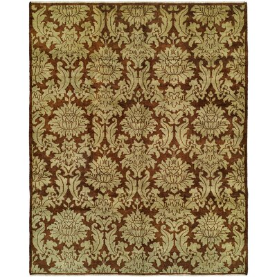 Chand Hand-Knotted Brown Area Rug Rug Size: 4 x 6