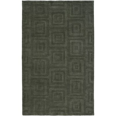 Chander Hand-Woven Gray Area Rug Rug Size: 36 x 56