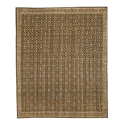 Hand Knotted Brown/Beige Area Rug
