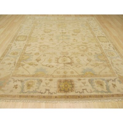 Morgan Hand Knotted Ivory Area Rug Rug Size: 6 x 9
