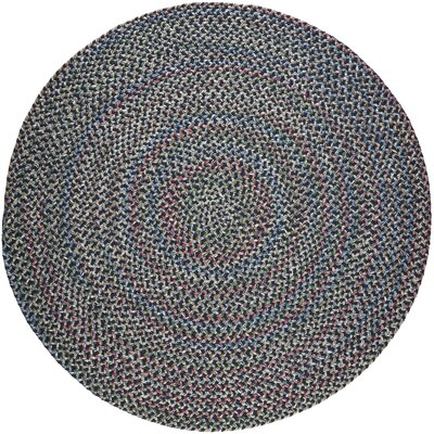 Rehli Blue Indoor/Outdoor Area Rug Rug Size: Round 8