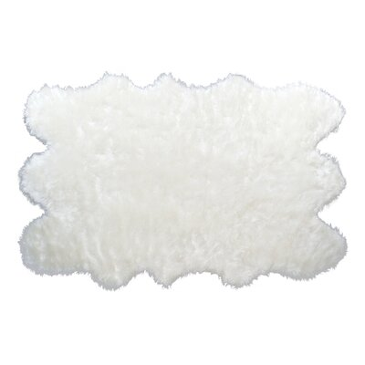 White Area Rug Rug Size: 5 x 7
