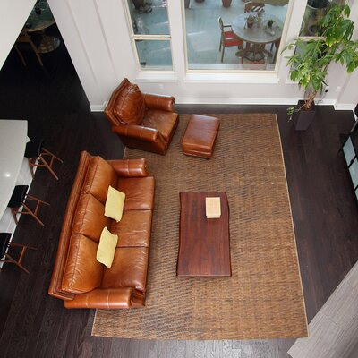 Chemung Hand-Woven Brown Area Rug