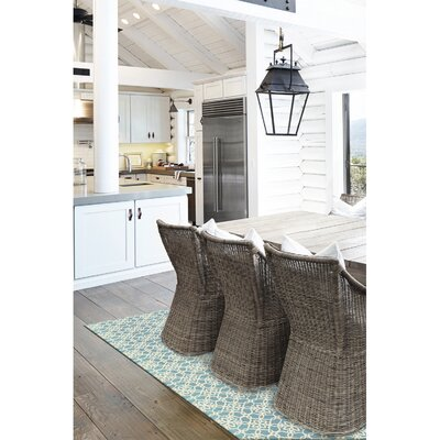 Hand Woven Aqua Blue/White Indoor/Outdoor Area Rug Rug Size: 5 x 7