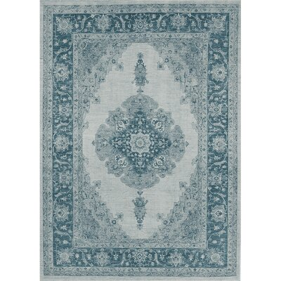 Parisa Blue Indoor/Outdoor Area Rug Rug Size: 5 x 7