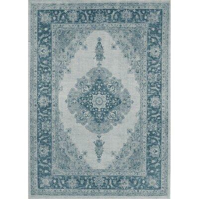 Parisa Blue Indoor/Outdoor Area Rug Rug Size: 5 x 7