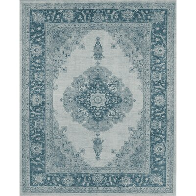 Parisa Blue Indoor/Outdoor Area Rug Rug Size: 8 x 10