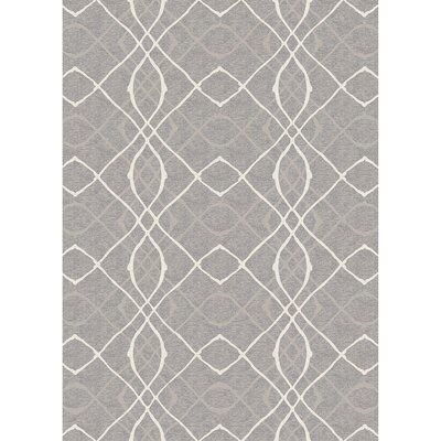 Amara Gray Indoor/Outdoor Area Rug Rug Size: 5 x 7