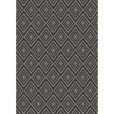 Black Indoor/Outdoor Area Rug Rug Size: 5' x 7'