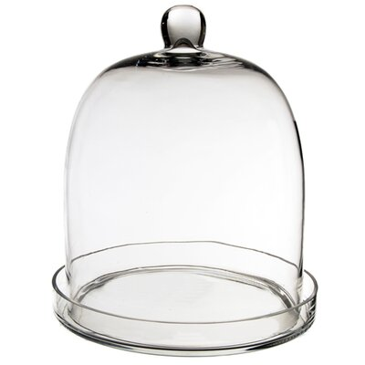 Glass Dome Cloche Size: 14 H x 11 W x 11 D