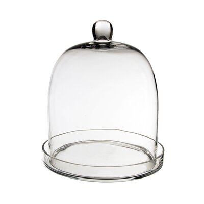Glass Dome Cloche Size: 11 H x 8.75 W x 8.75 D