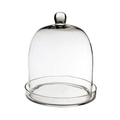 Glass Dome Cloche Size: 11 H x 8.75 W x 8.75 D