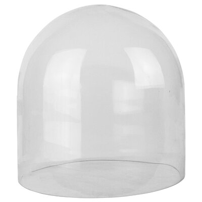 Glass Dome Cloche Size: 12 H x 12 W x 12 D