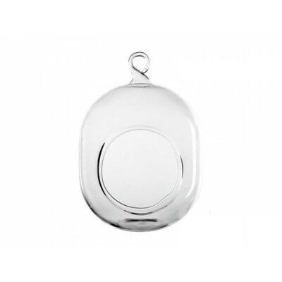 Oval Hanging Round Terrarium GCH116/06-24P