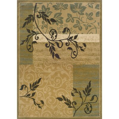 Albrightsville Gold/Green Area Rug Rug Size: Rectangle 5 x 73