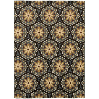 Sheridan Blue/Brown Area Rug Rug Size: Rectangle 53 x 73