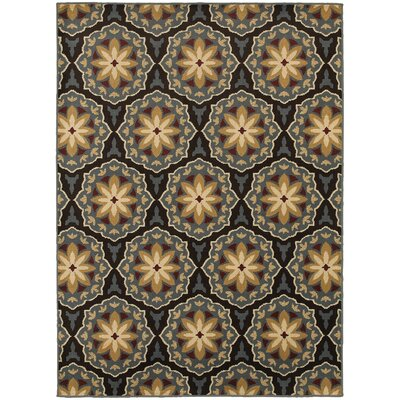 Sheridan Blue/Brown Area Rug Rug Size: Rectangle 67 x 93