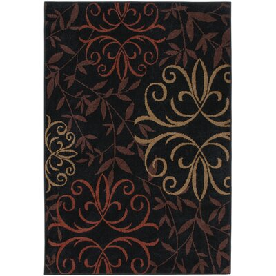 Olivia Black Indoor/Outdoor Area Rug Rug Size: Rectangle 52 x 76