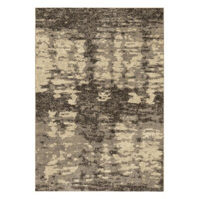 Spencer Beige Area Rug Rug Size: 53 x 76