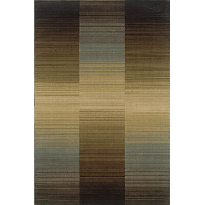 Robbins Brown/Blue Area Rug Rug Size: Runner 110 x 76