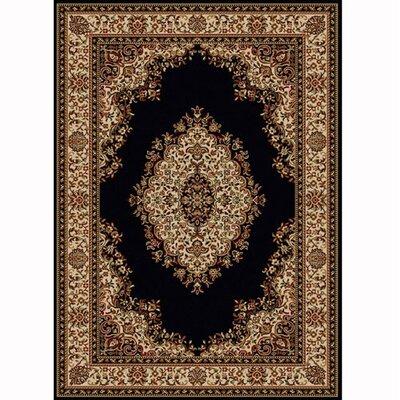 Colebrook Black Area Rug Rug Size: 33 x 411