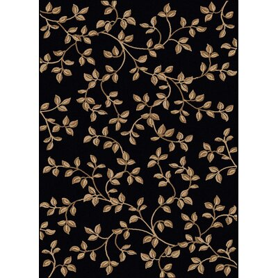 Rockport Black Area Rug Rug Size: 55 x 77