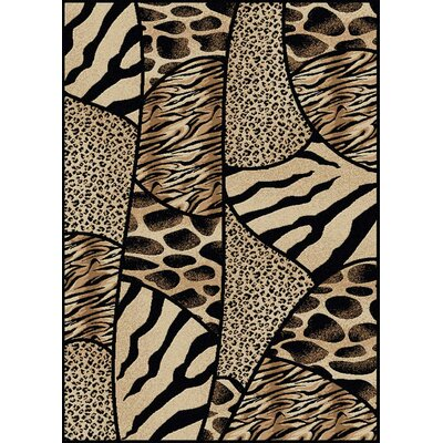 Stamford Black Area Rug Rug Size: 55 x 77