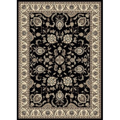 Windsor Black Area Rug Rug Size: 79 x 11