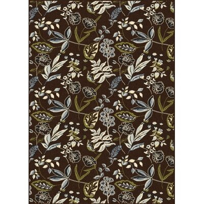 Windsor Brown Area Rug Rug Size: Runner 22 x 77