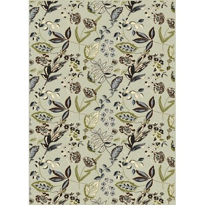 Windsor Green Area Rug Rug Size: Rectangle 55 x 77