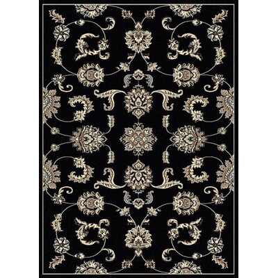 Windsor Black Area Rug Rug Size: Rectangle 33 x 411